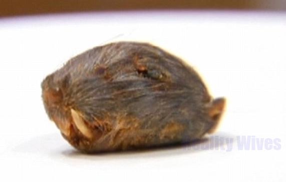 rats head