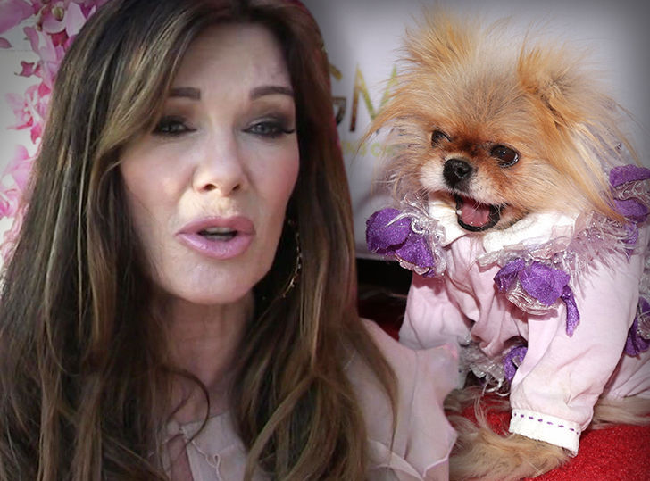 lisa-vanderpump-giggy