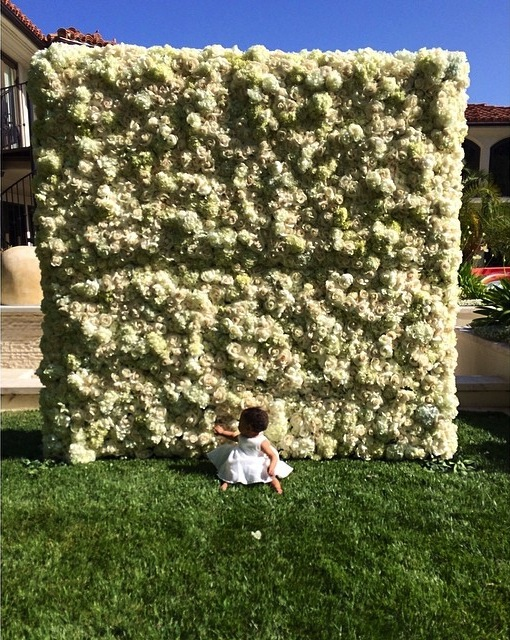 wall of flowers-north west