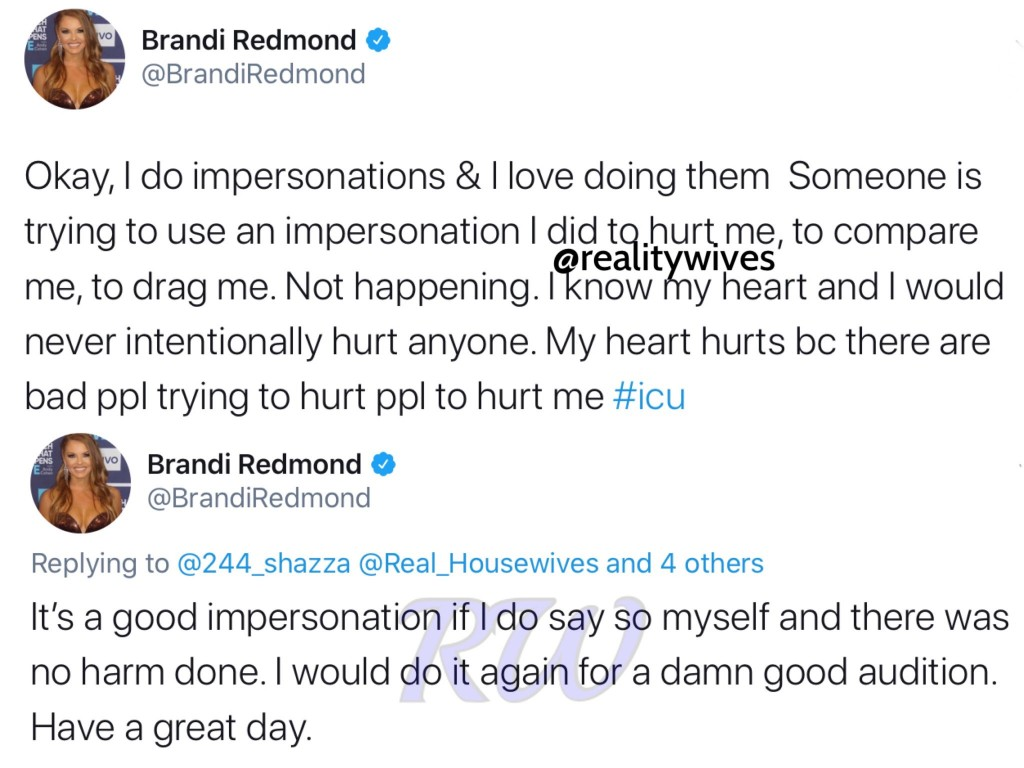brandi redmond-racist tweets-2